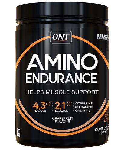 QNT Amino Endurance 350 гр